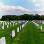 Hundreds of volunteers and veterans, including members of Texas A&M San Antonio Military Affairs along with Project Phoenix, converge on Fort Sam Houston National Cemetery to honor the falle ...